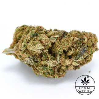 BLACK ERIKA legal weed cannabis legale 324x324 - Black Erika - 2,5gr - Legal weed infiorescenze, cannabis-light