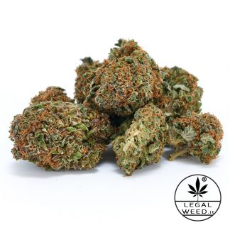 WILD ALTEA legal weed cannabis light italia 324x324 - Wild Altea - 5gr - by Legal weed infiorescenze, cannabis-light