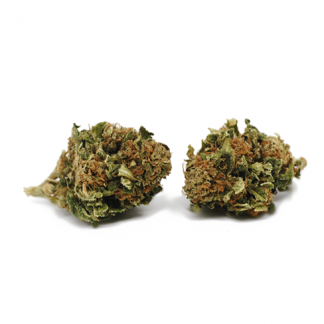 shadingSpiritprod 2 324x324 - Orange Bud CBD - 2gr - cannabis legale - CBweed offerte, infiorescenze, cannabis-light