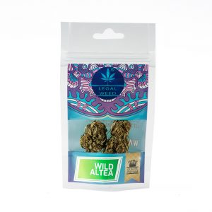 wild altea legal weed cannabis 300x300 - Wild Altea - 2,5gr - Legal weed cannabis-legale, fino-a-3-gr, cannabis-light