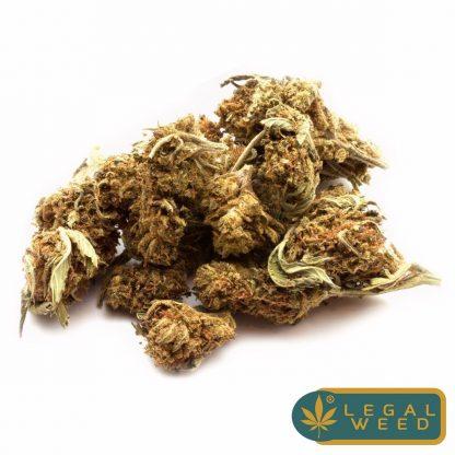 wild altea legale cannabis 02 2 2 1 416x416 - Wild Altea - 2,5gr - by Legal weed infiorescenze, cannabis-light
