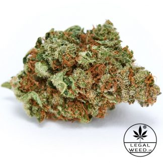 BLUE JO legal weed cannabis light italia 2 324x324 - Blue Jo - 2,5gr - cannabis light - Legal weed infiorescenze, cannabis-light