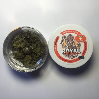 IMG 1129 416x416 - Royal Cheese® CBD 30% - 3gr - erba legale - XXXjoint infiorescenze, cannabis-light