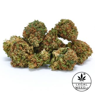 NEW HOPE legal weed cannabis light italia 324x324 - New Hope - 5gr - by Legal weed infiorescenze, cannabis-light