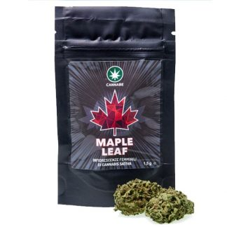 maple leaf by cannabe cannabis light italia pacchetto 324x324 - Maple Leaf -3gr- Cannabe infiorescenze, cannabis-light