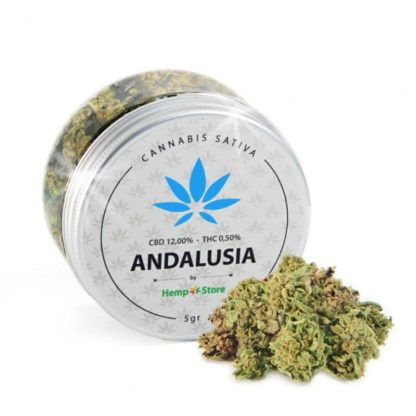 andalusia cannabis light italia hemp store 416x416 - Andalusia - 5gr - by Hemp Store infiorescenze, cannabis-light