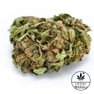 DON PEDRO legal weed cannabis light 324x324 - Don Pedro - 2,5gr - Legal weed infiorescenze, cannabis-light