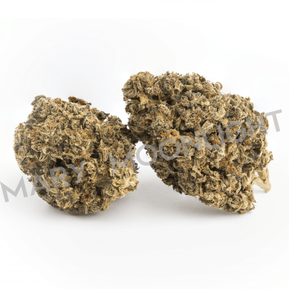 amnesia mary moonlight cannabis light italia 416x416 - Amnesia - 1 gr - Mary Moonlight prodotti-in-evidenza, offerte, infiorescenze, cannabis-light
