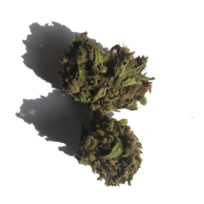 b california cannabis legale cannabislightitalia 416x416 - California - 2gr - by Cannabis light Italia infiorescenze, cannabis-light
