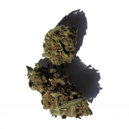 b og tropical cannabis legale 416x416 - OG Tropical - 2gr - Cannabis light Italia offerte, infiorescenze, cannabis-light