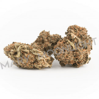 light orange marymoonlight cannabis light italia 324x324 - Dark Shark - 3 gr - by Mary Moonlight offerte, infiorescenze, cannabis-light
