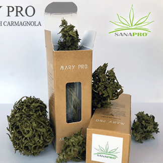 marypro sanapro cannabis light italia 324x324 - Mary Pro - 5gr - by Sanapro infiorescenze, cannabis-light, aromaterapia
