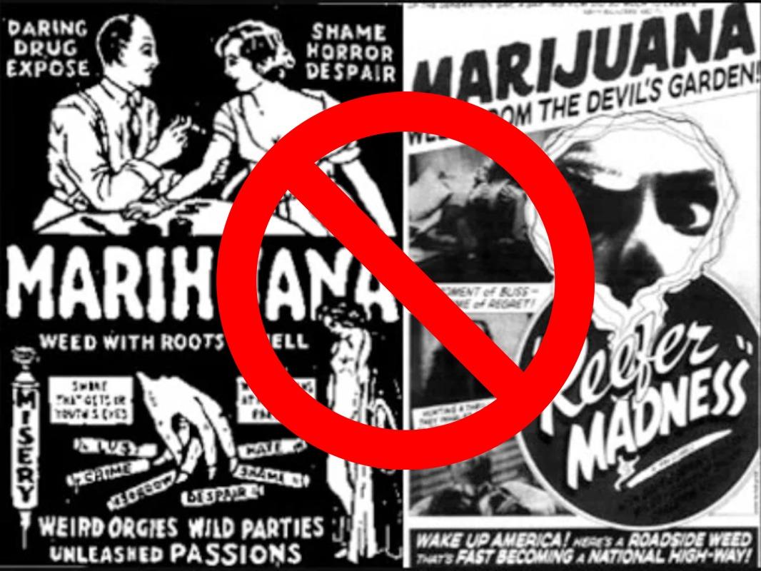 proibizionismo marijuana - Storia del proibizionismo della canapa informazioni, canapa