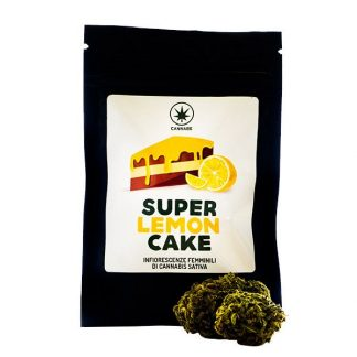 super lemon cake cannabe cannabis light italia infiorescenze femminili cannabis sativa legale 324x324 - Super Lemon Cake - 3gr - Cannabe infiorescenze, cannabis-light