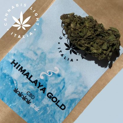 himalaya gold cannabis light italia fiori canapa legale 416x416 - Himalaya Gold - 2gr - Cannabis light Italia offerte, infiorescenze, cannabis-light