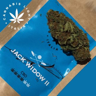 jack widow II cannabis light italia canapa legale 324x324 - Jack Widow II - 3gr - by Cannabis light Italia infiorescenze, cannabis-light
