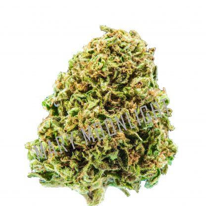Purple Candy 2020 416x416 - Purple Candy - 3gr - Mary Moonlight cannabis-legale, cannabis-light