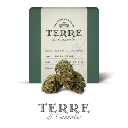 10 TERRE cannabis SANTA 3grams LR 416x416 - Santa Verde - 3gr - by Terre di Cannabis novita, infiorescenze, cannabis-light