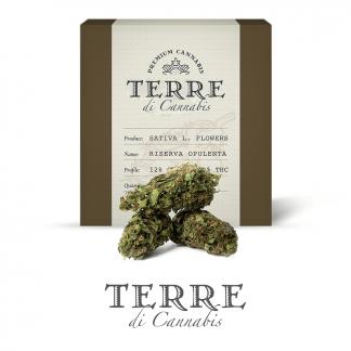 5 TERRE cannabis RISERVA 3grams LR 324x324 - Riserva Opulenta - 3gr - Terre di Cannabis infiorescenze, cannabis-light