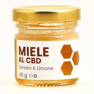 miele al cbd zenzero e limone cannabe 324x324 - Miele al CBD - Zenzero e Limone - 40gr - Cannabe alimenti, alimentari