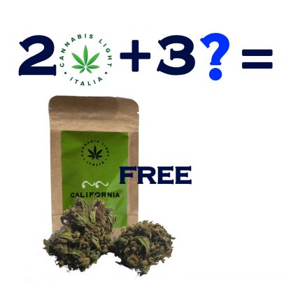 kit free 416x416 - Free Pack - Kit Infiorescenze Cannabis Legale kit-pack-promo, cannabis-light
