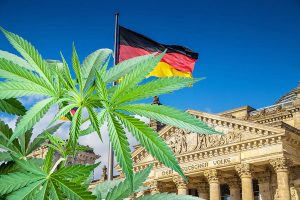 Germania produzione cannabis 300x200 - In Germania il governo seleziona produttori di cannabis medica, in Italia cosa aspettiamo? terapie-alternative, informazioni, cannabis-light