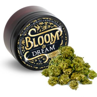 bloom dream cannabis light 324x324 - Dream - 3gr - Bloom infiorescenze, cannabis-light