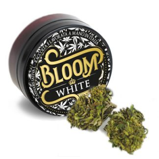 bloom white canapalife cannabis legale 324x324 - White - 3gr - Bloom infiorescenze, cannabis-light