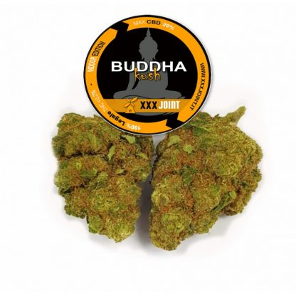 budda kush cbd 20 xxxjoint cannabis light italia 416x416 - Budda Kush CBD - 3gr - Xxxjoint infiorescenze, cannabis-light