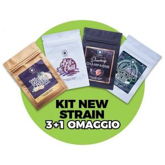 kit infiorescenze cannabe 324x324 - Cannabe Pack - 4gr - Kit Infiorescenze Cannabis legale kit-pack-promo, cannabis-light