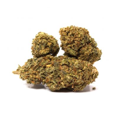 Cheese 02weed zero2weed infiorescenza cannabis legale 416x416 - Cheese - 2gr - Zero2weed novita, infiorescenze, cannabis-light