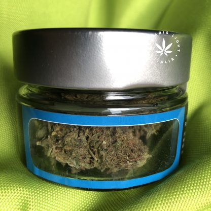 blueberry kush hemp farm italia fiori di canapa cannabis legale 416x416 - Blueberry Kush - 5gr - Hemp Farm Italia novita, infiorescenze, cannabis-light