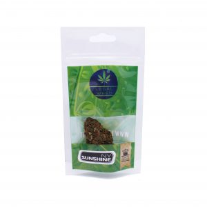 ny sunshine legal weed cannabis legale 300x300 - TERRE DI CANNABIS