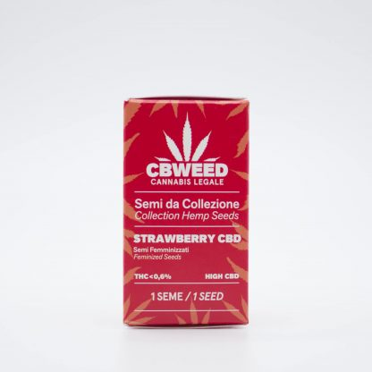 Strawberry semi di cannabis light 416x416 - Semi Femminizzati Strawberry CBD - Cbweed semi, novita, cannabis-light