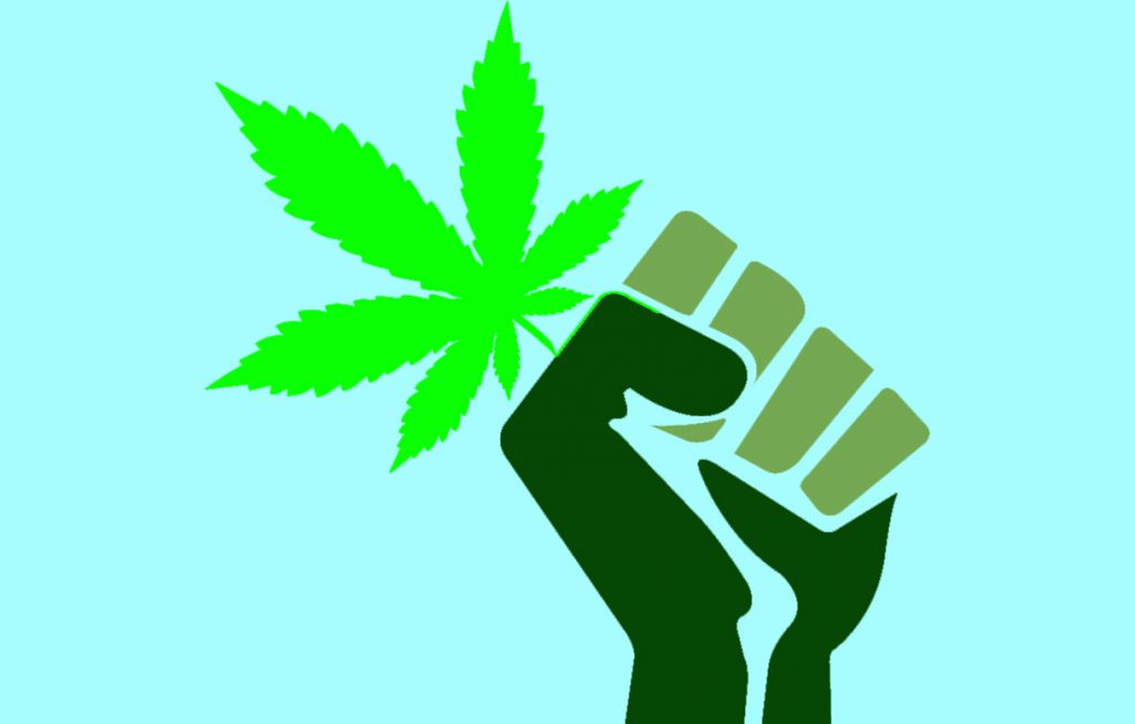 cassazione cannabis 1024x654 - Ancora incertezze. Negozi di cannabis a rischio. Si attende il 31 Maggio. cannabis-light