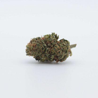 gorilla glue cannabis legale cbweed fiore 416x416 - Gorilla Glue CBD - 1gr - Cbweed infiorescenze, cannabis-light