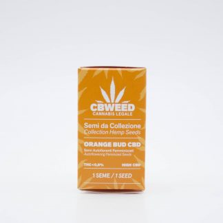 semi cannabis light Orange Bud cbweed 324x324 - Semi Autofiorenti Femminizzati Orange Bud CBD - Cbweed semi, novita, cannabis-light