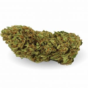 og kush cbweed infiorescenza marijuana light 300x300 - Home