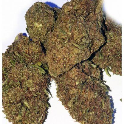 ak 47 cbd 26 416x416 - AK 47 CBD - 5gr - Xxxjoint novita, infiorescenze, cannabis-light
