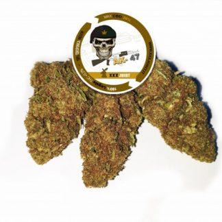 ak 47 cbd 26 cannabis light xxx joint 324x324 - AK 47 CBD - 5gr - Xxxjoint novita, infiorescenze, cannabis-light