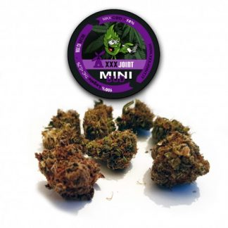 mini bud cbd 18 mix cannabis legale xxx joint 324x324 - Mini Bud CBD - 5gr - Xxxjoint infiorescenze, cannabis-light