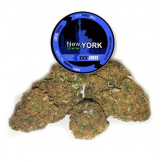 new york diesel cbd 29 xxjoint cannabis 324x324 - New York Diesel - 5gr - Xxxjoint novita, infiorescenze, cannabis-light