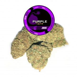 purple haze cbd 28 cannabis legale xxxjoint 324x324 - Purple Haze CBD - 5gr - Xxxjoint novita, infiorescenze, cannabis-light