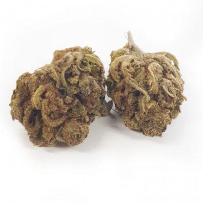summer weed cbd 27 416x416 - Summer Weed CBD - 3gr - Xxxjoint infiorescenze, cannabis-light