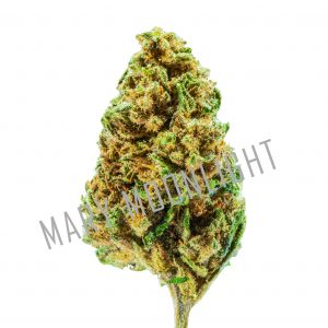 SPACE Widow 2020 1 1 300x300 - Space Widow new - 3gr - Mary Moonlight cannabis-legale, fino-a-3-gr, cannabis-light