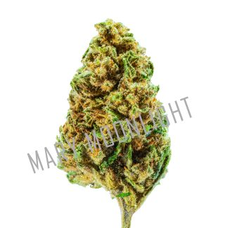 SPACE Widow 2020 1 1 324x324 - Space Widow - 3gr - Mary Moonlight cannabis-legale, cannabis-light