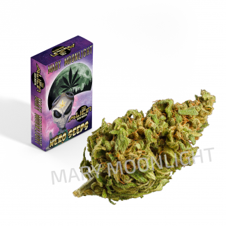 alien jack motta cbd cannabis 324x324 - Alien Jack Motta CBD - 1gr - Mary Moonlight infiorescenze, cannabis-light