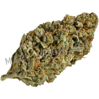 bloody fruit spirit cannabis legale 416x416 - Bloody Fruit Spirit - 1gr - Mary Moonlight novita, infiorescenze, cannabis-light