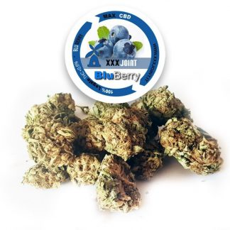 bluberry cbd xxxjoint 324x324 - Bluberry - 5gr - Xxxjoint novita, infiorescenze, cannabis-light