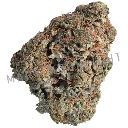 dinamed kush cannabis light dinafem 416x416 - Dinamed Kush - 1gr - Mary Moonlight novita, infiorescenze, cannabis-light